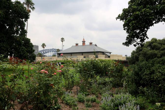 悉尼、堪培拉21日自由行⒁悉尼6-皇家植物园-室内设计零基础书籍图片