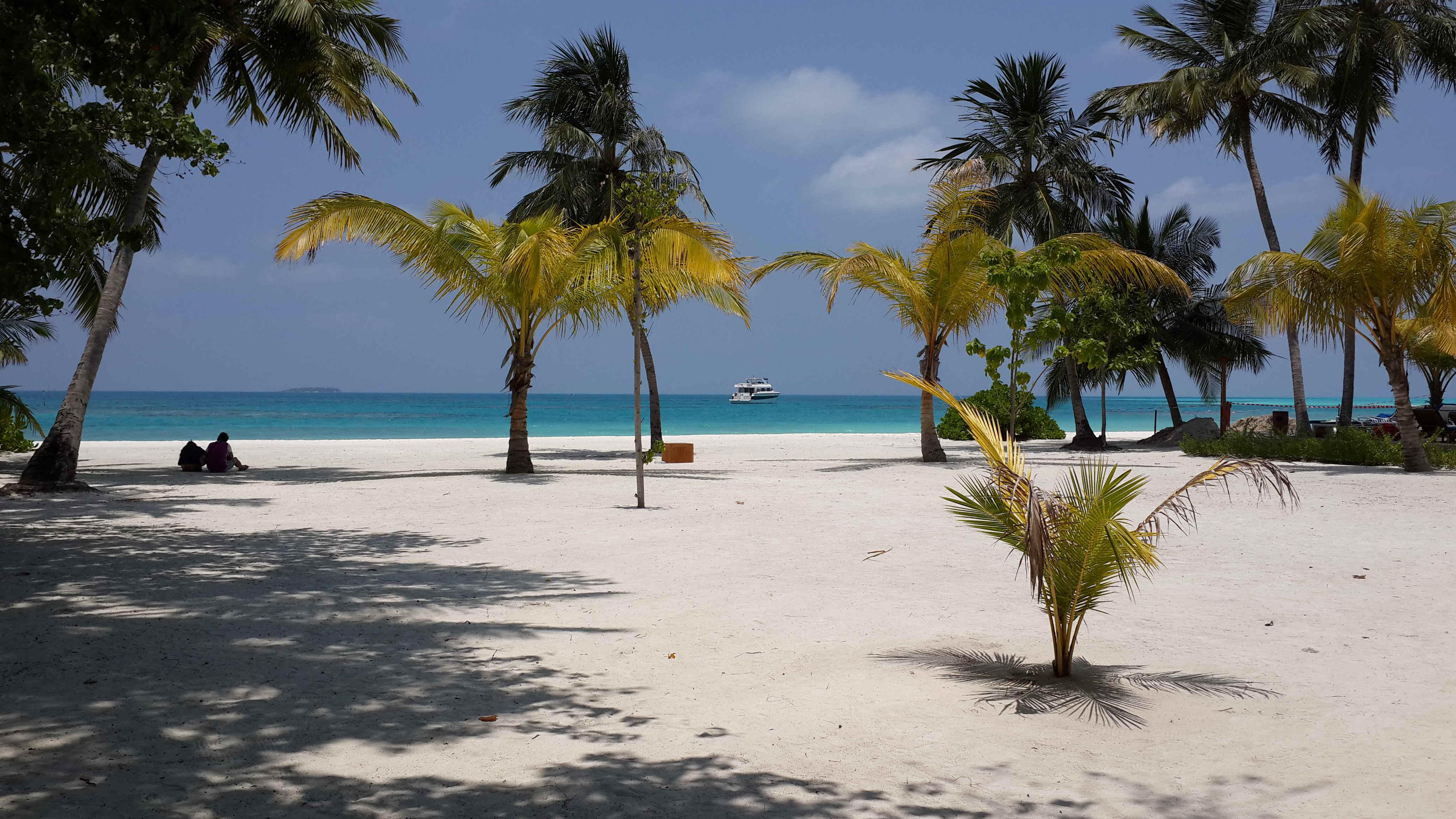 马尔代夫 蜜月岛 我们一家来啦!