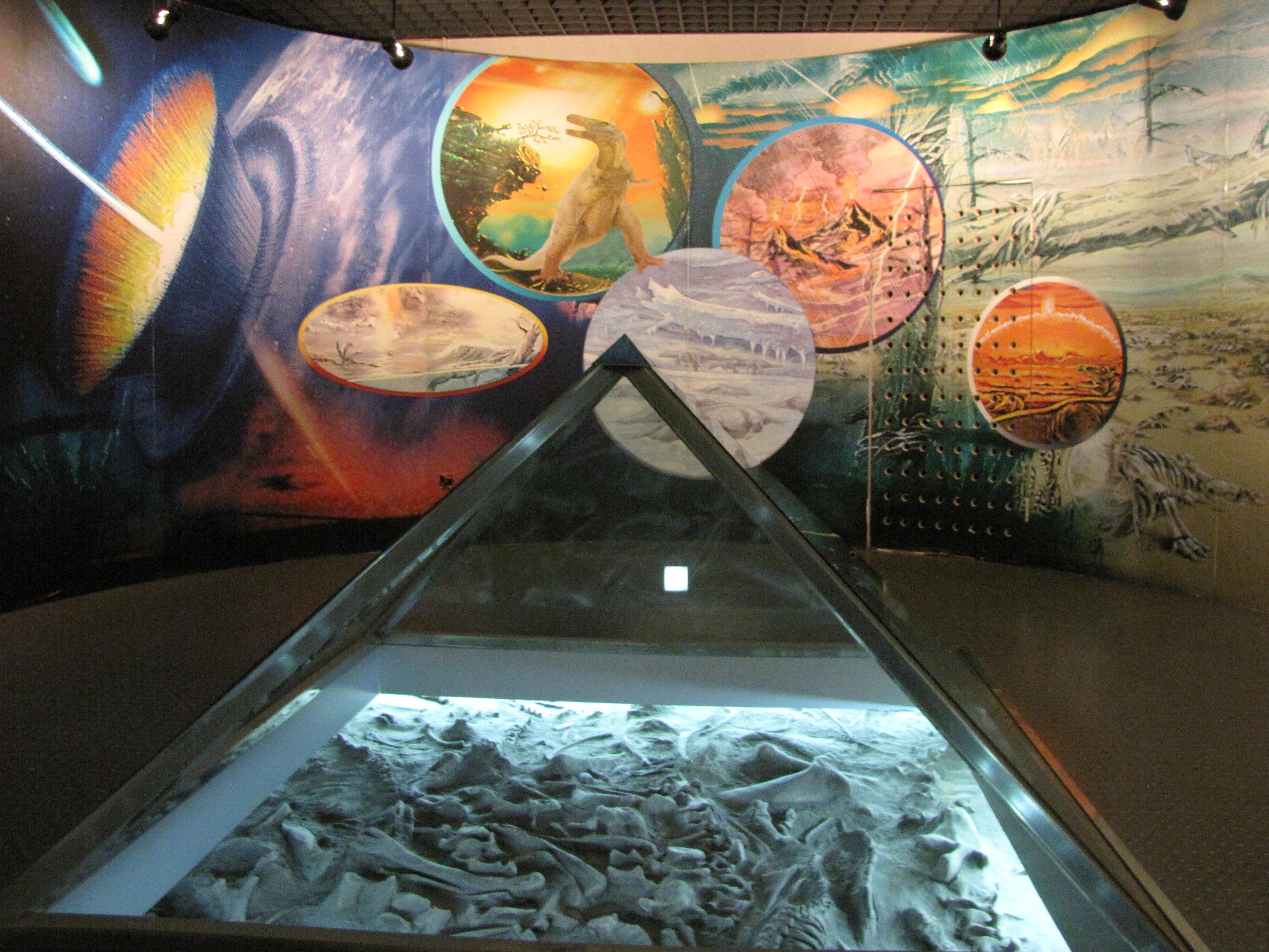 中国地质博物馆每天能吸引多少个孩子?