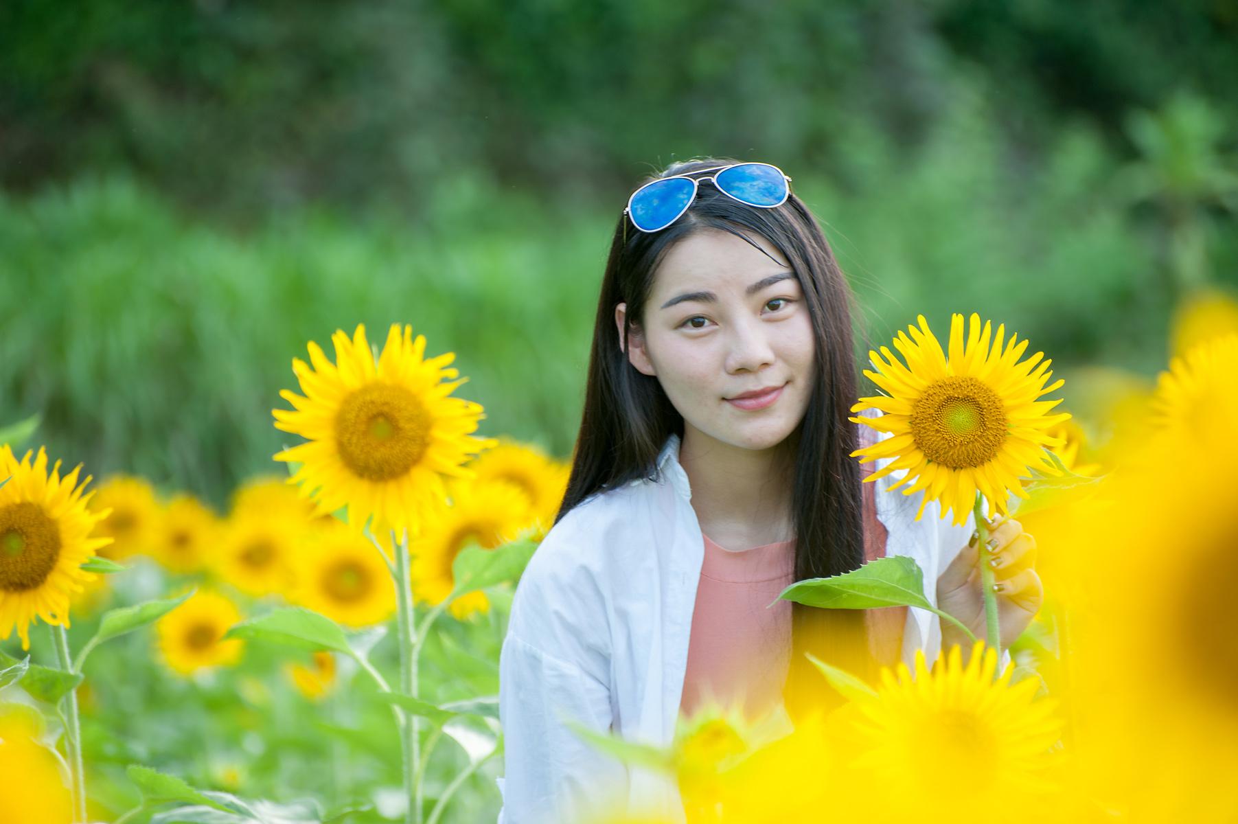 醉美齐云山》美女带你去看向日葵