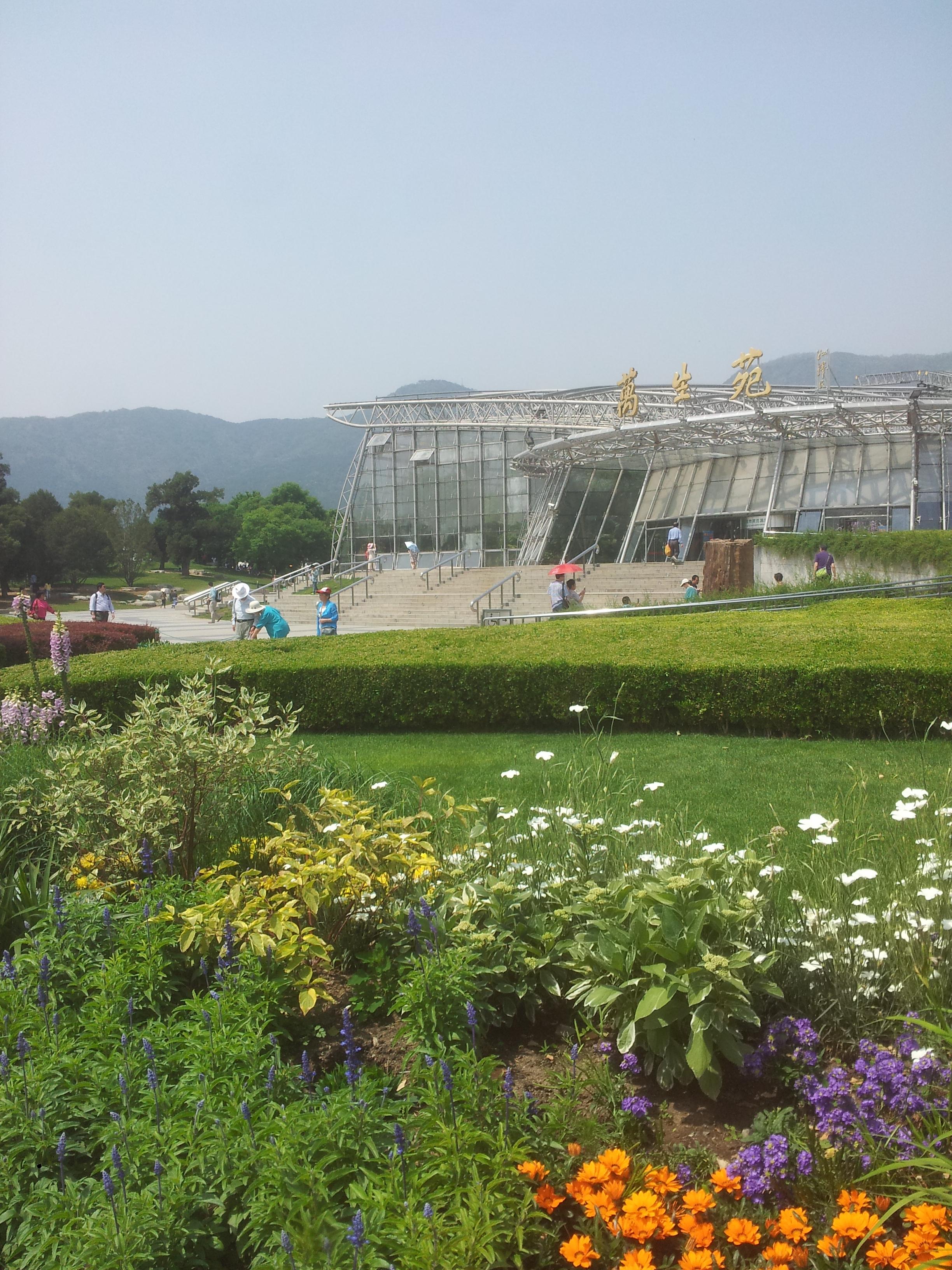 月季,蔷薇,玫瑰齐聚北京植物园