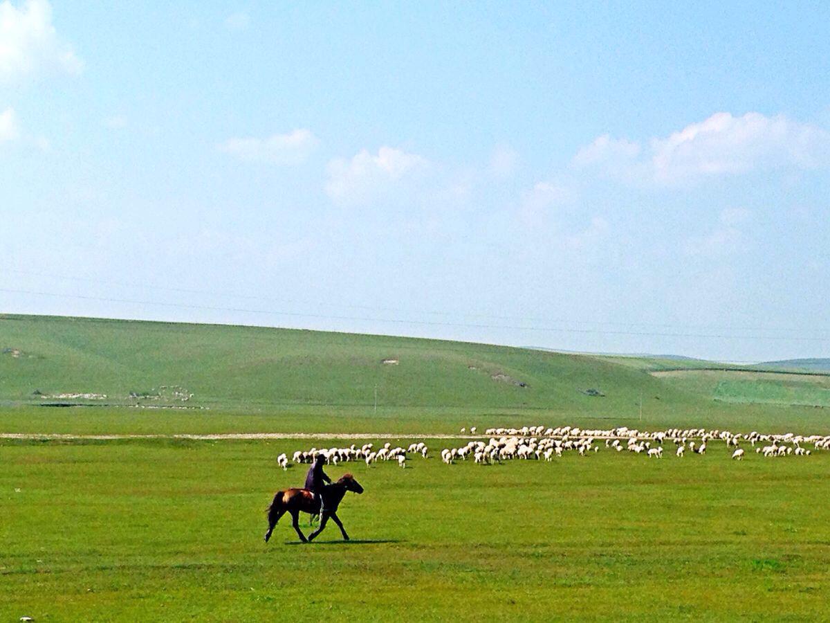 北京到内蒙古暑期自驾游