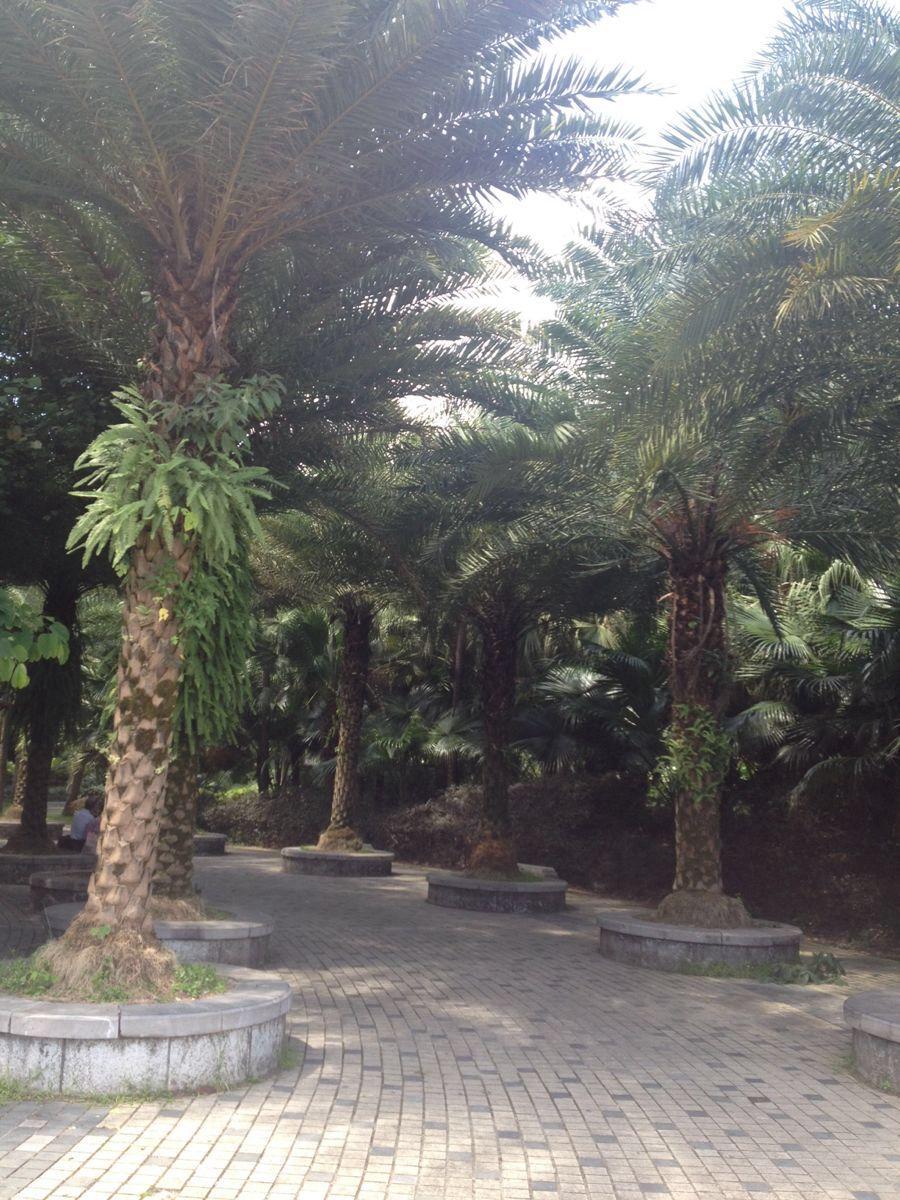 桂林植物园