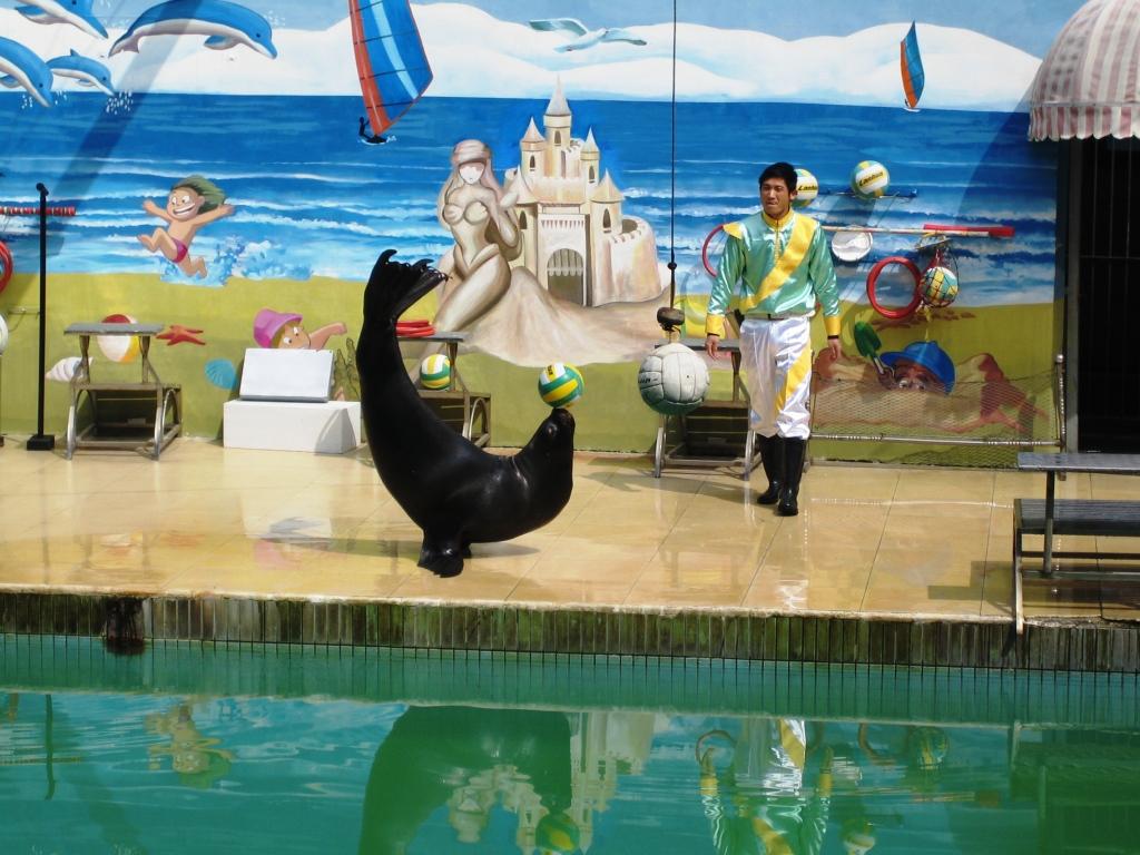 【携程攻略】上海上海野生动物园朋友出游点评