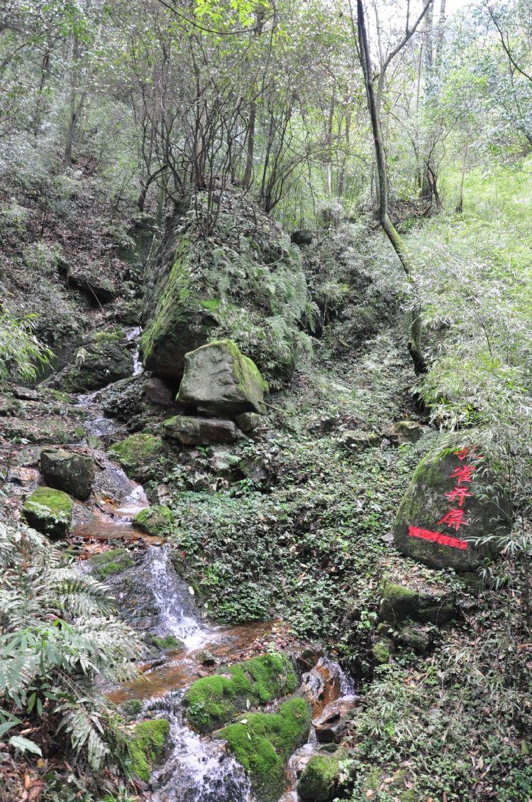 贵州游记之都匀斗篷山网游之攻略男神橙光游戏图片