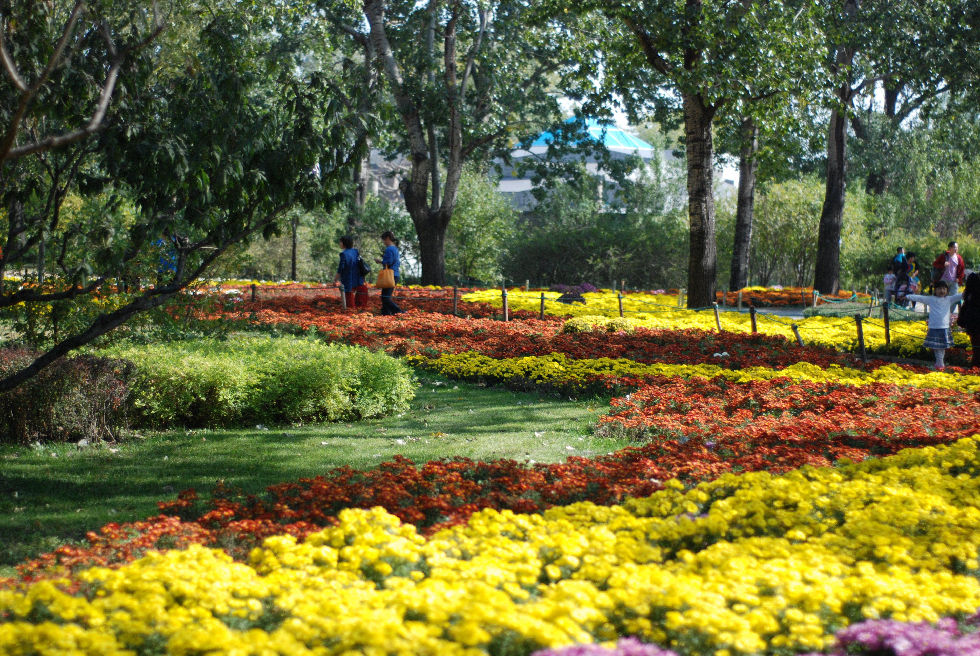 园_北京植物园