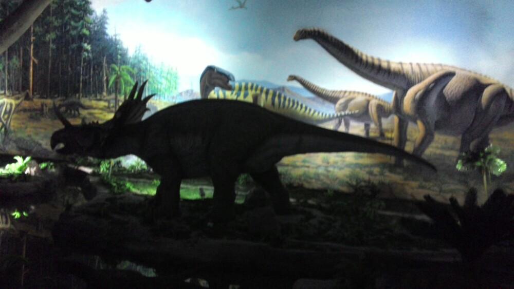 小孩学画画动物恐龙