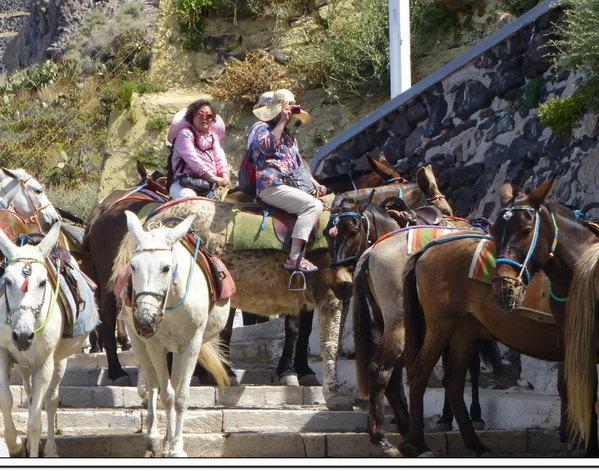 美女骑驴图片美女骑驴圣托里尼岛费拉小镇圣托里尼