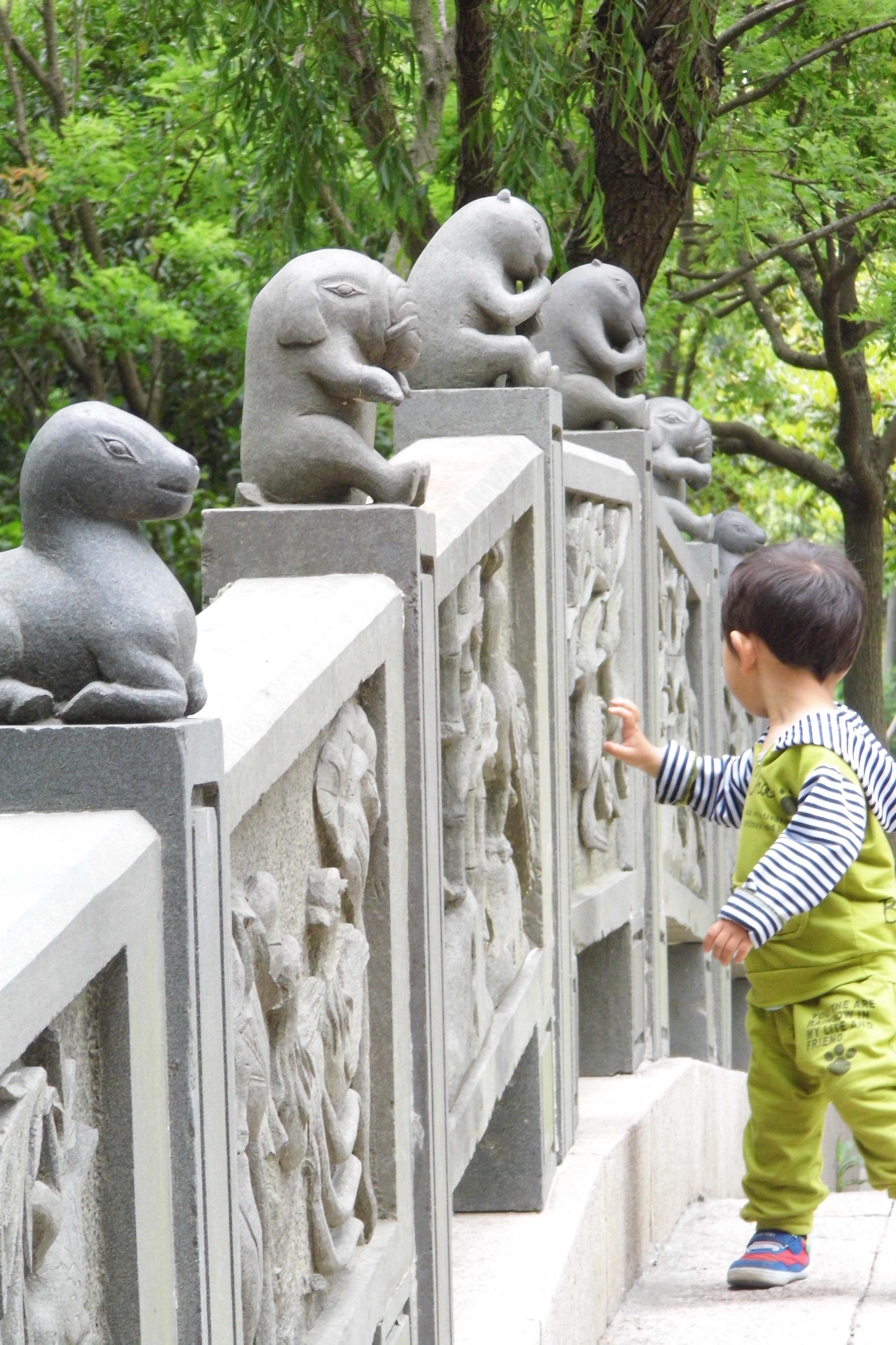 上海野生动物园|上海游记-携程旅行