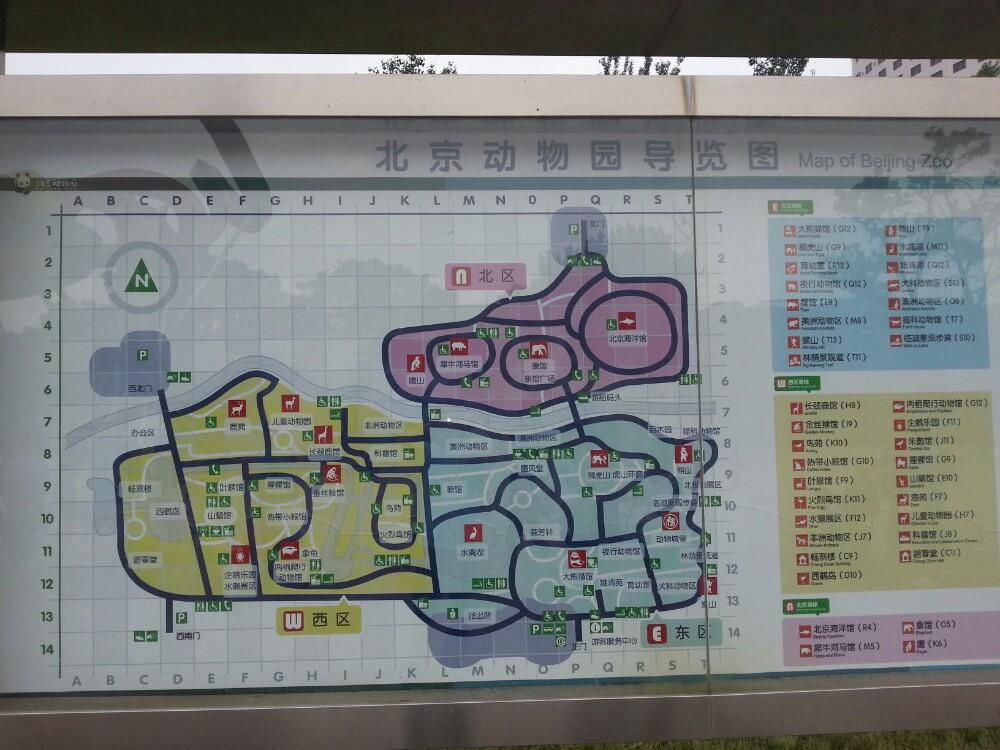 上海站到動物園怎么走_上海到南通如何走_從西安到上海走那條高速近