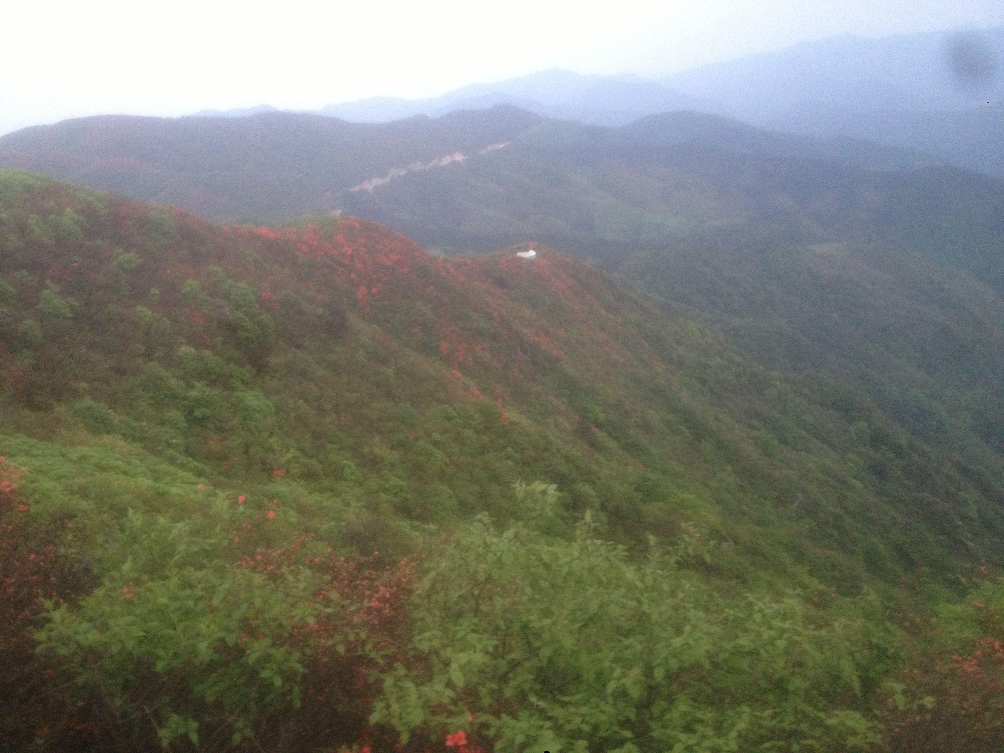 阳明山国家森林公园,永州阳明山国家森林公园攻略图片