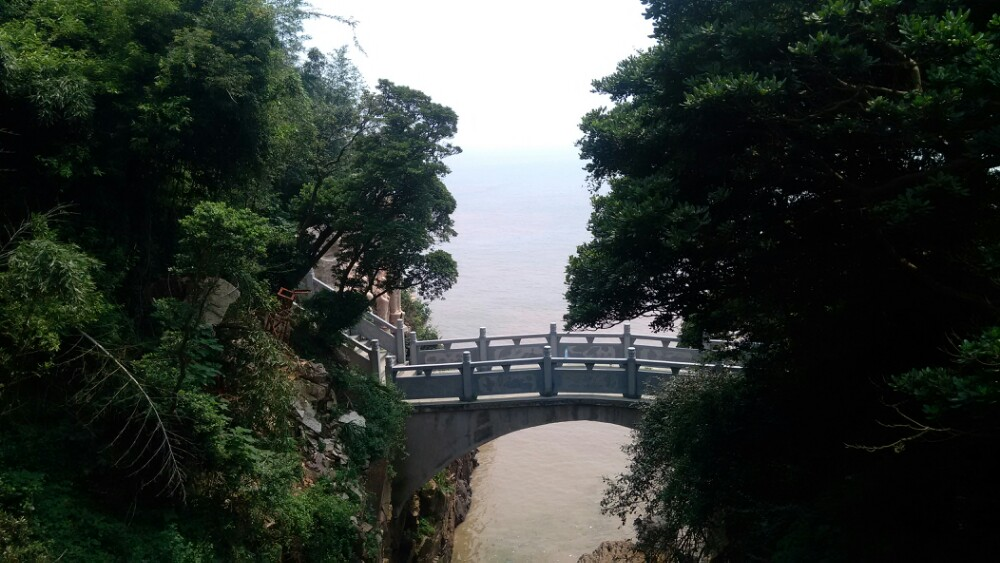 九龙山国家森林公园,平湖九龙山国家森林公园攻略