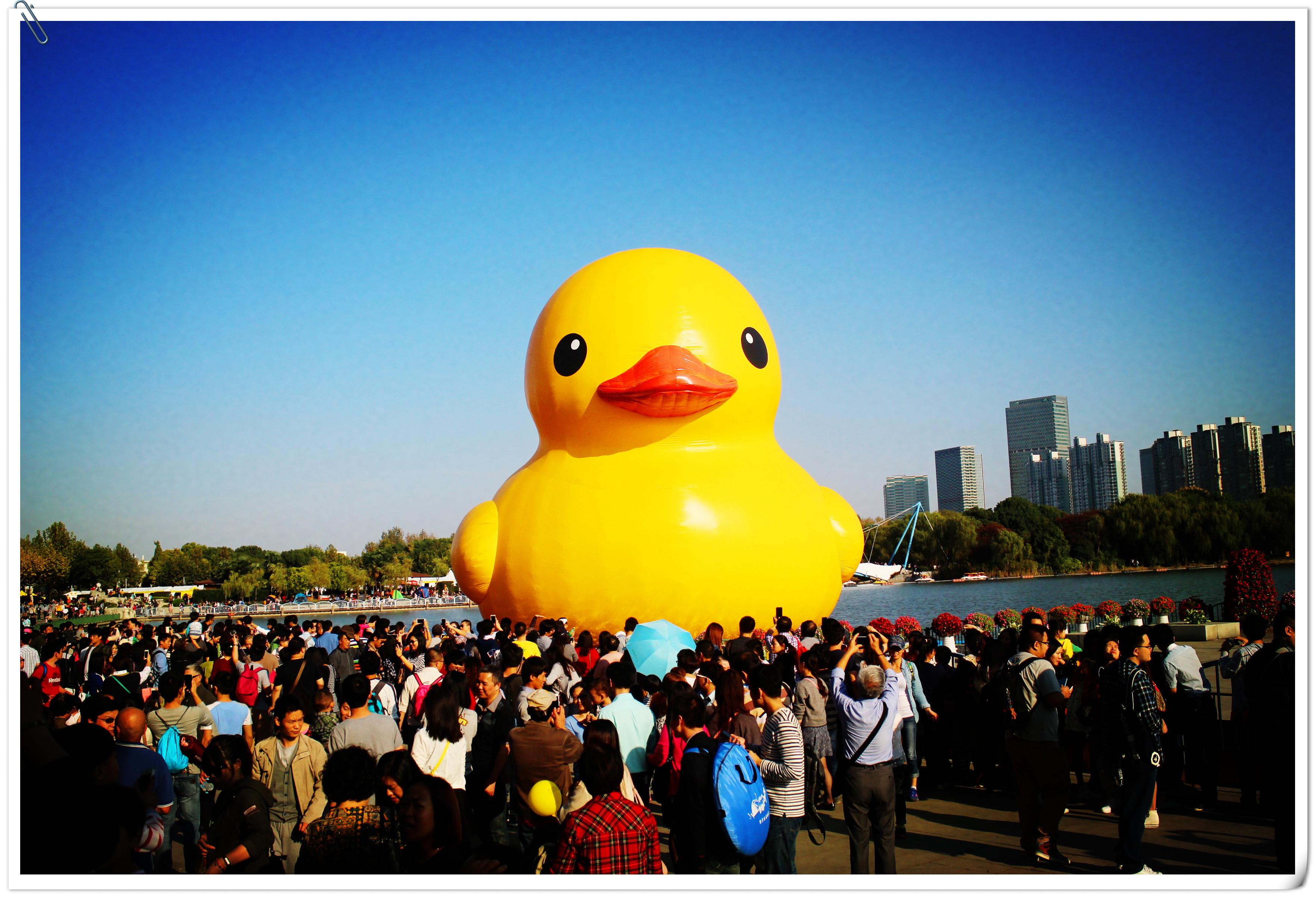 大黄鸭事件是什么_世纪公园大黄鸭图片_排行榜大全
