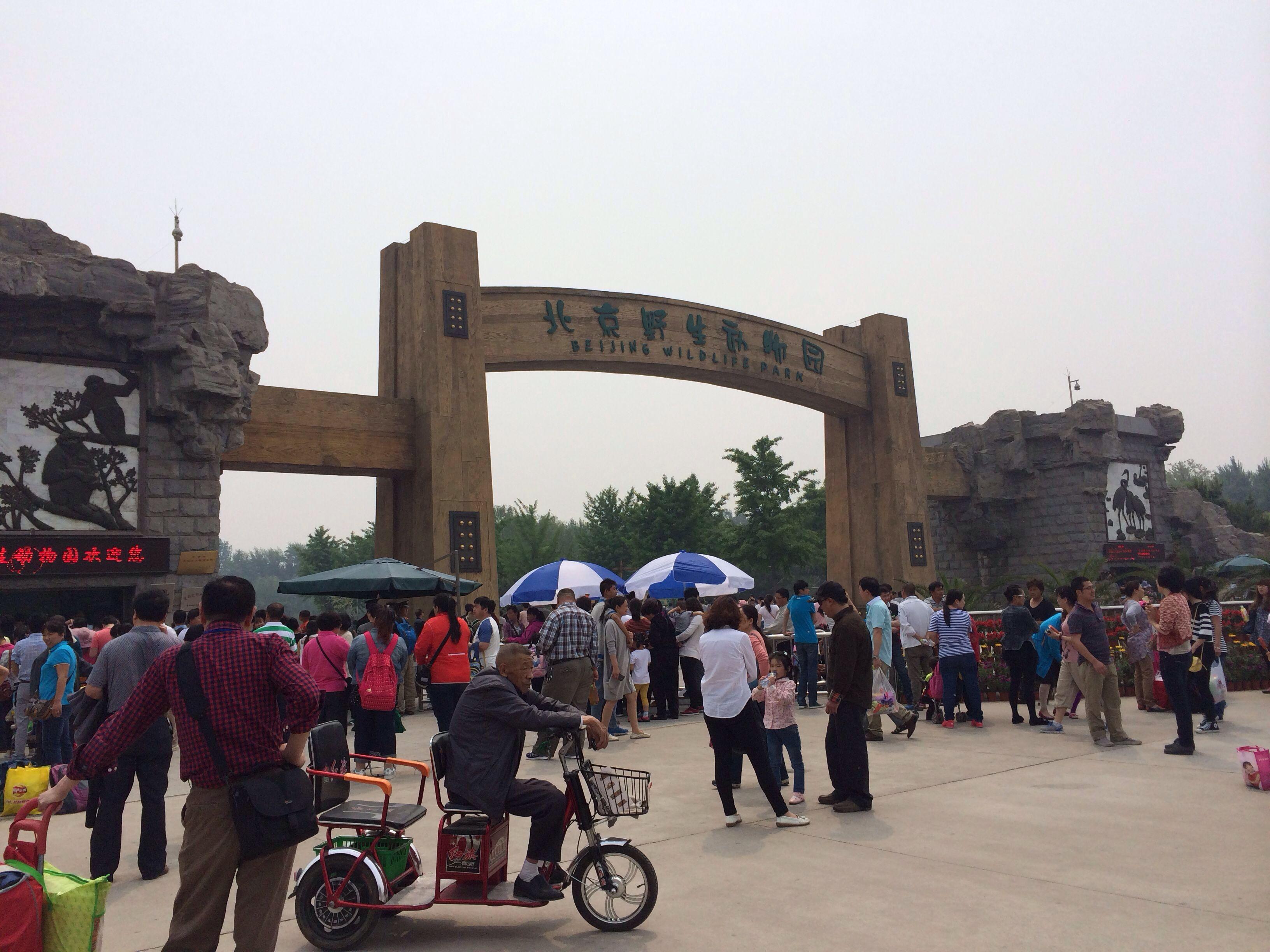 大兴野生动物园,北京大兴野生动物园攻略/地址/图片
