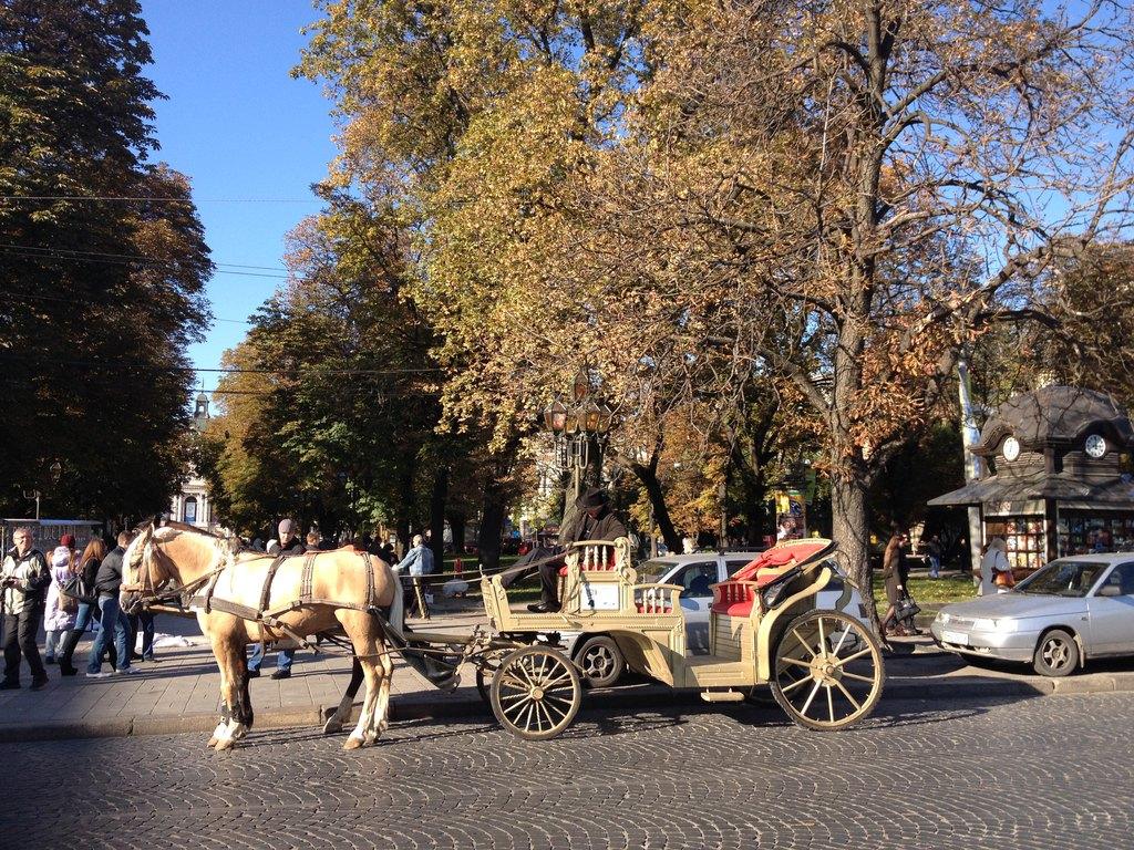 乌克兰露天浴场_奔5老妈畅游 乌克兰 最美城市利沃夫图片
