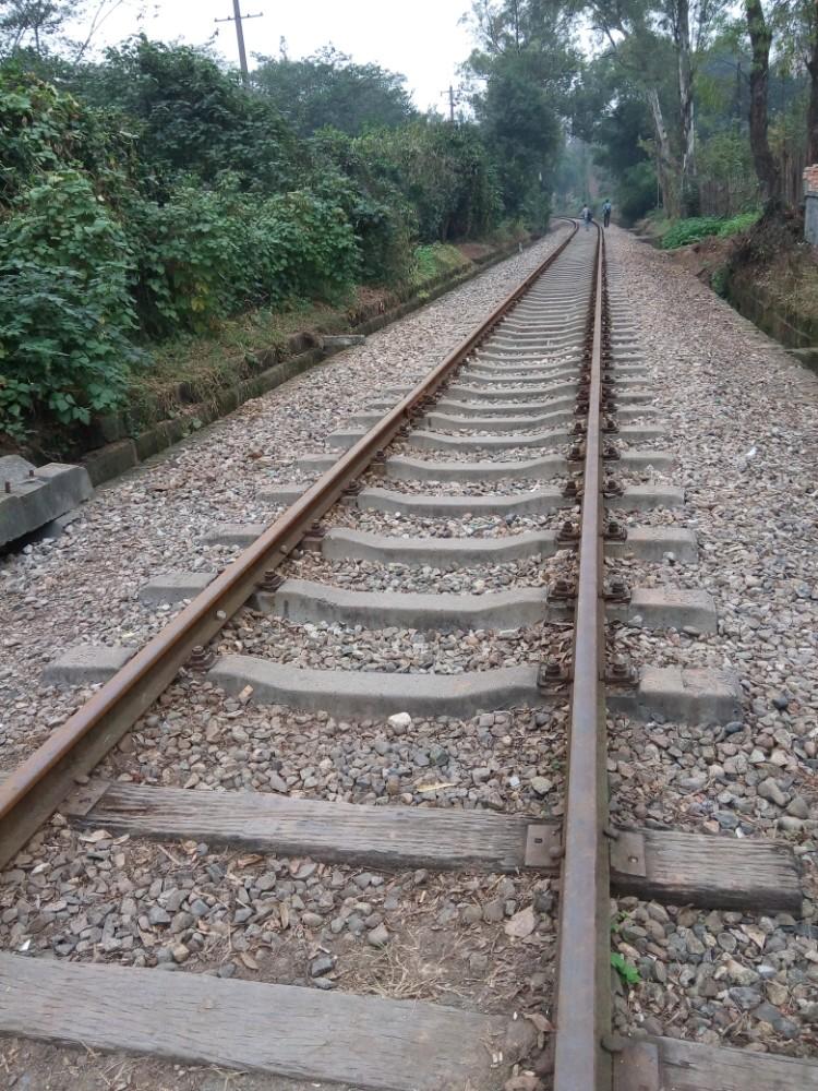植物园门外的火车轨道 猫大爷 成都游记攻略