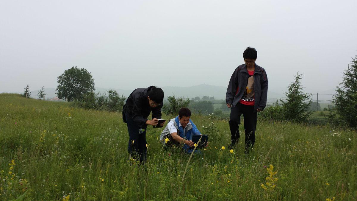 木兰围场,塞罕坝木兰围场攻略/地址/图片/门票【携程