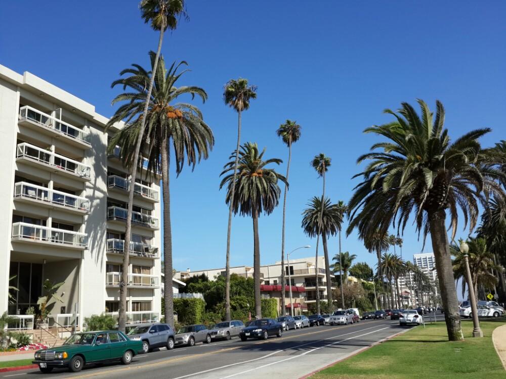 加州阳光_ 泛美自驾>加州阳光