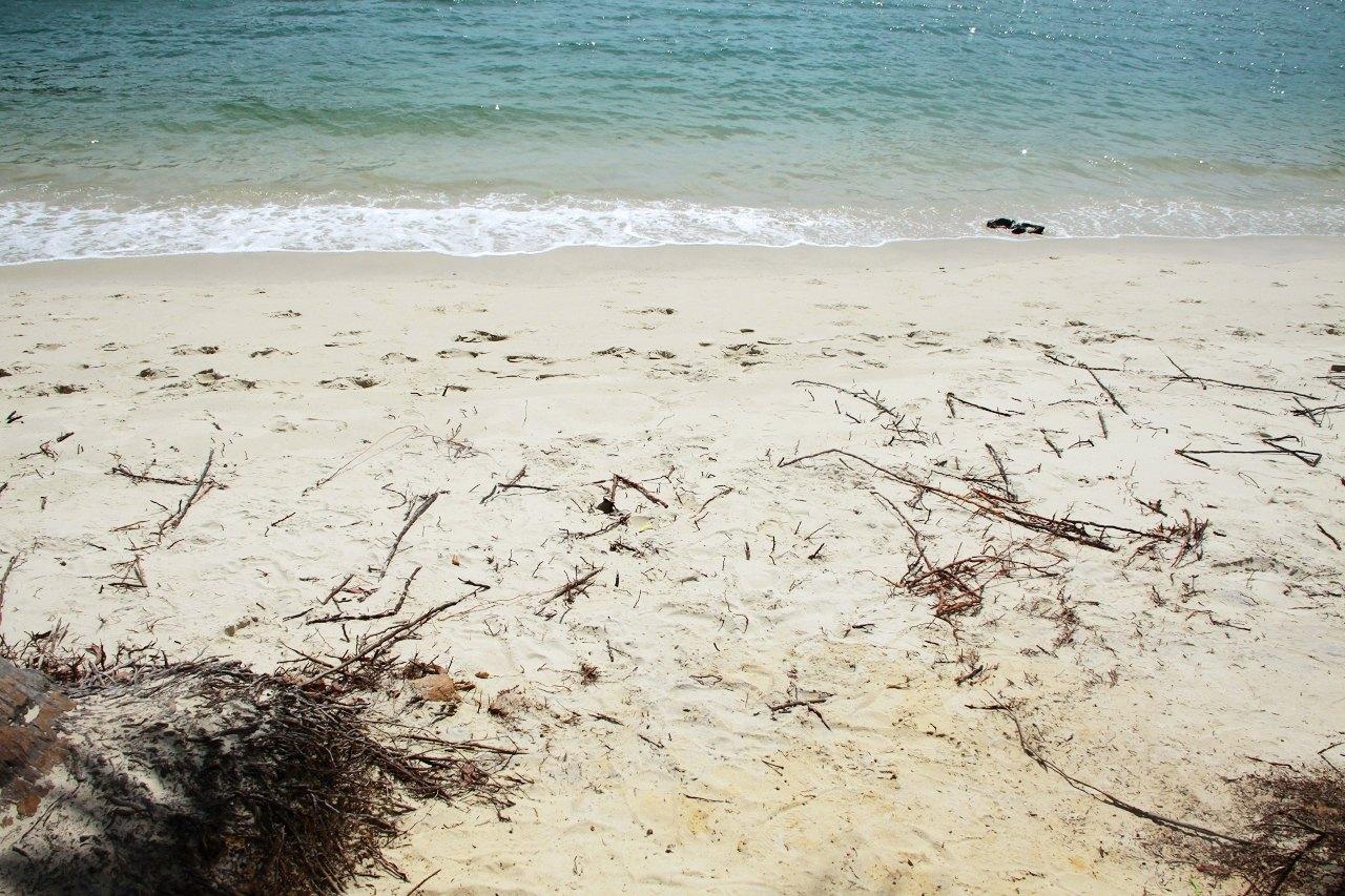 vivo沙滩壁纸