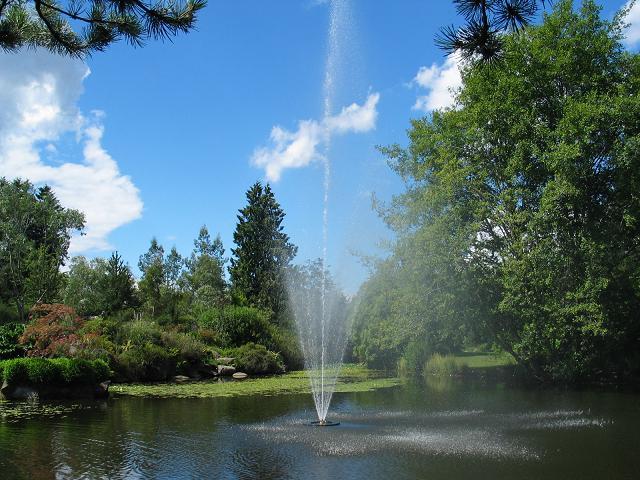范度森植物园是温哥华最大的植物园,也是全世界最棒的植物园之一.