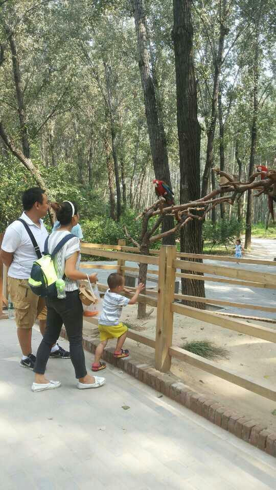 【携程攻略】北京北京野生动物园适合家庭亲子旅游吗
