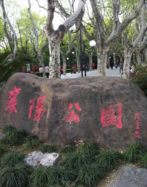 襄阳公园,上海襄阳公园攻略/地址/图片/门票【携程