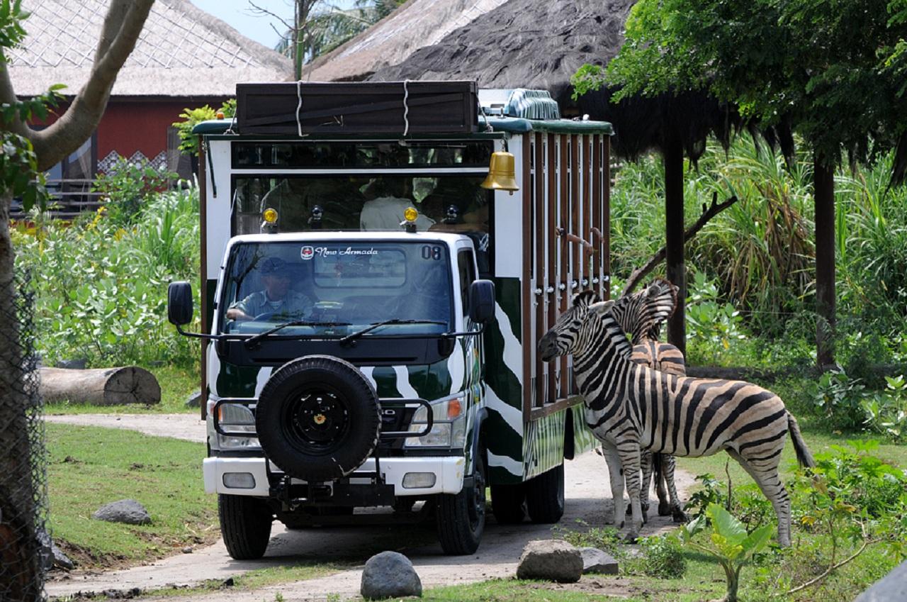 巴厘岛一日游·野生动物园+狮子餐厅午餐+沙努尔沙