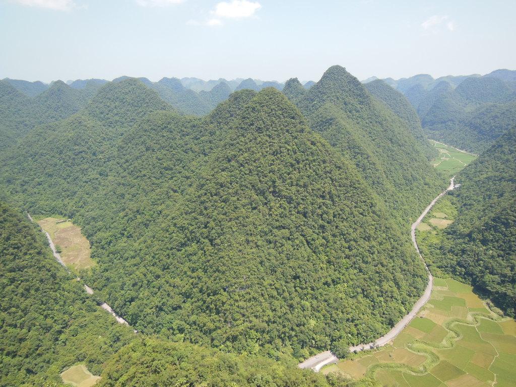 石上森林180度全景照图片