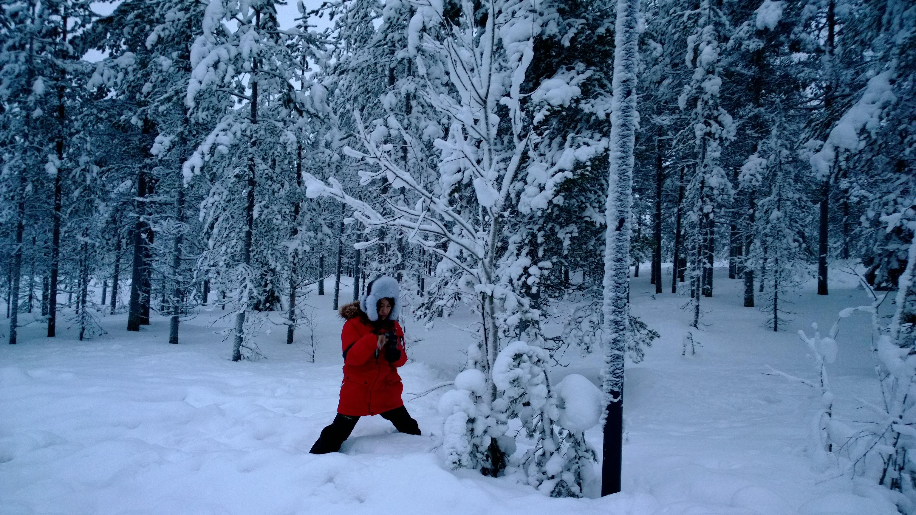 雪��/~���x+�x�&�7:d��_                  雪好深 拍个树
