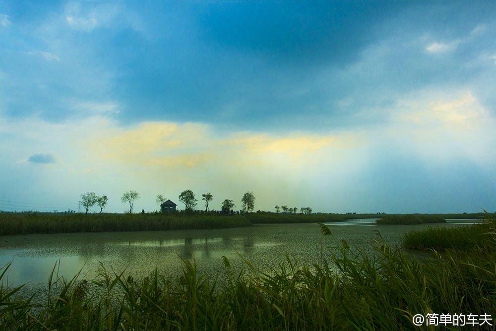 杭州湾公园国家攻略古墓丽影9墓湿地图片
