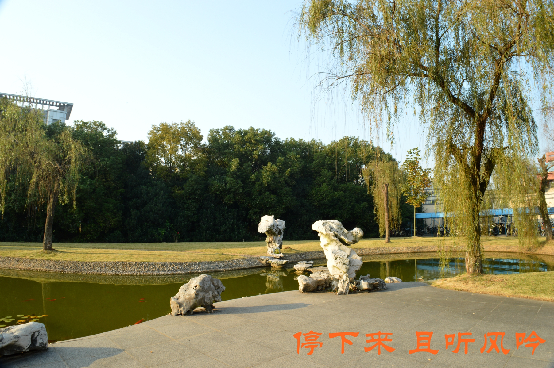 梦排名的地方高淳区高级中学开始杭州市余杭高中图片