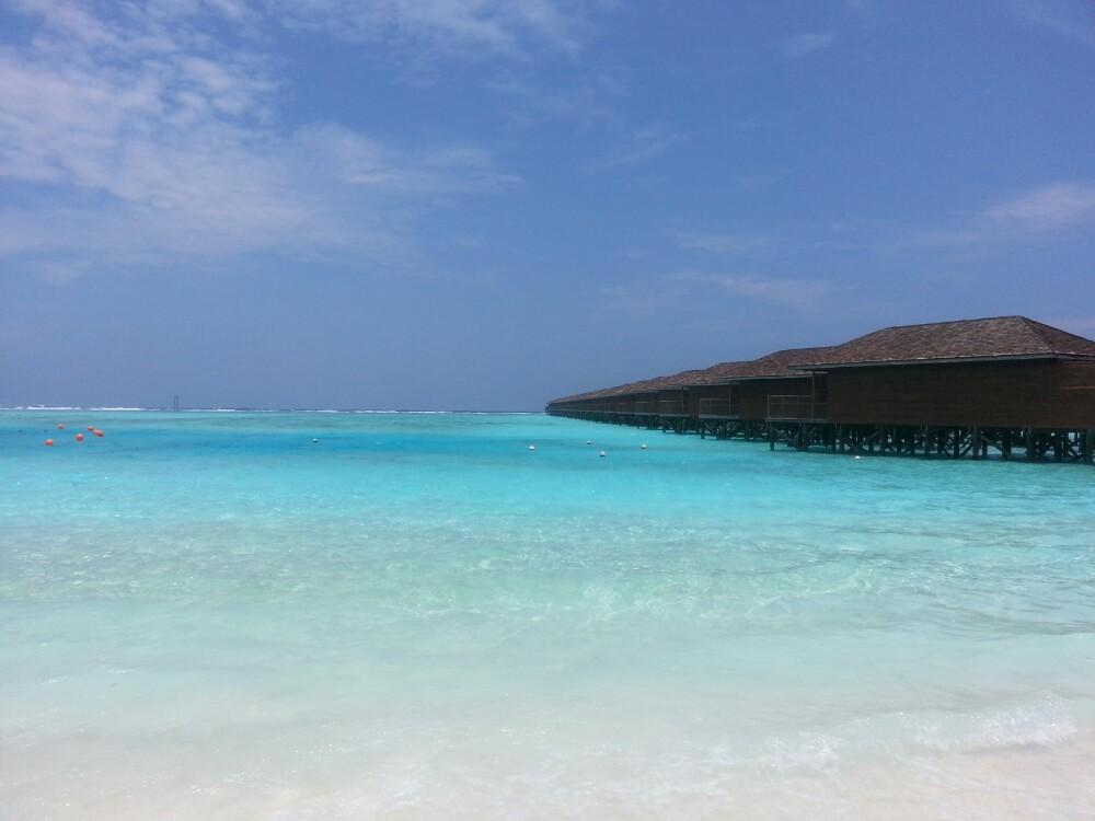 马尔代夫之蜜月岛! - 马尔代夫游记攻略【携程攻略】