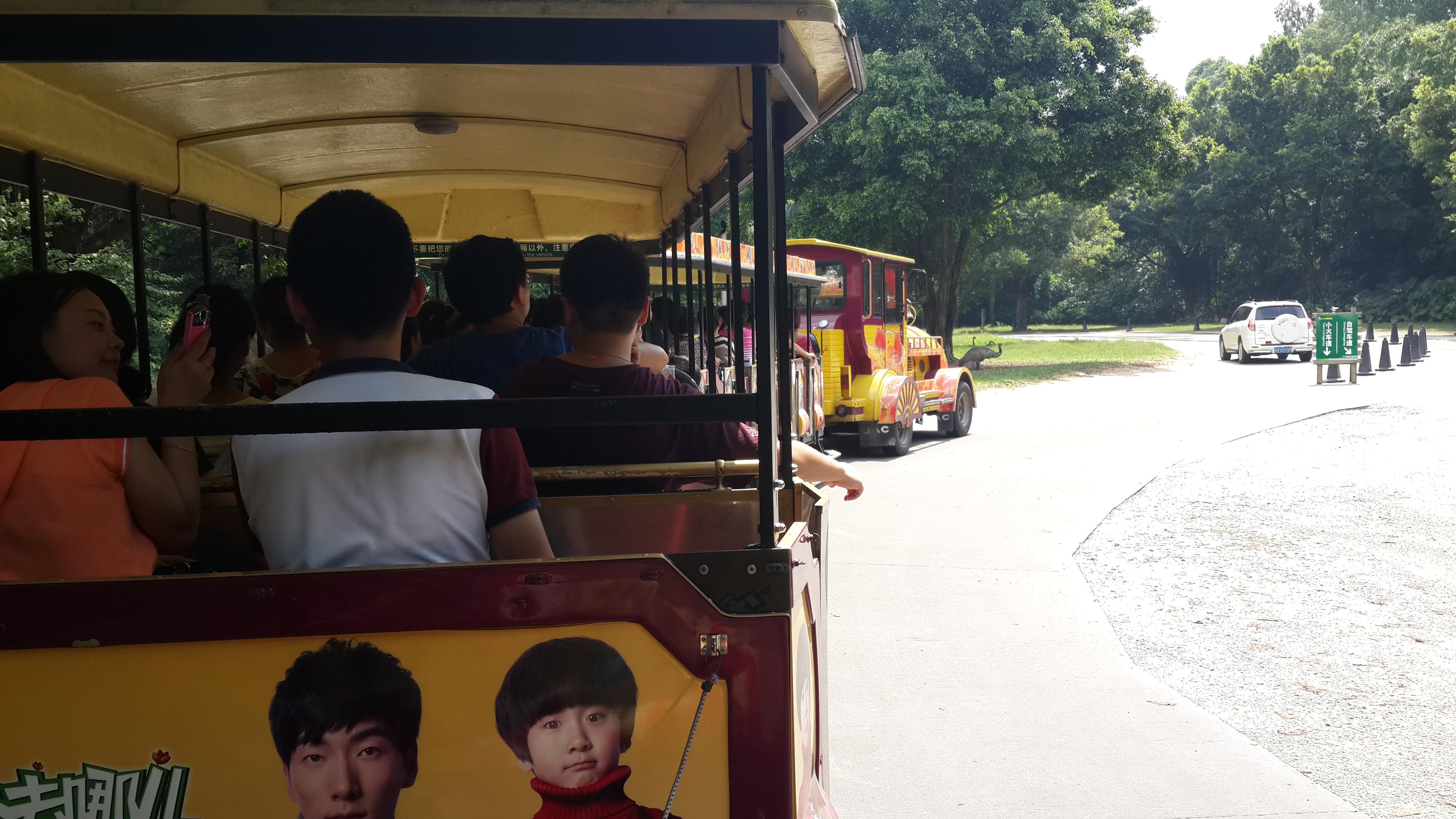 长隆野生动物园小火车