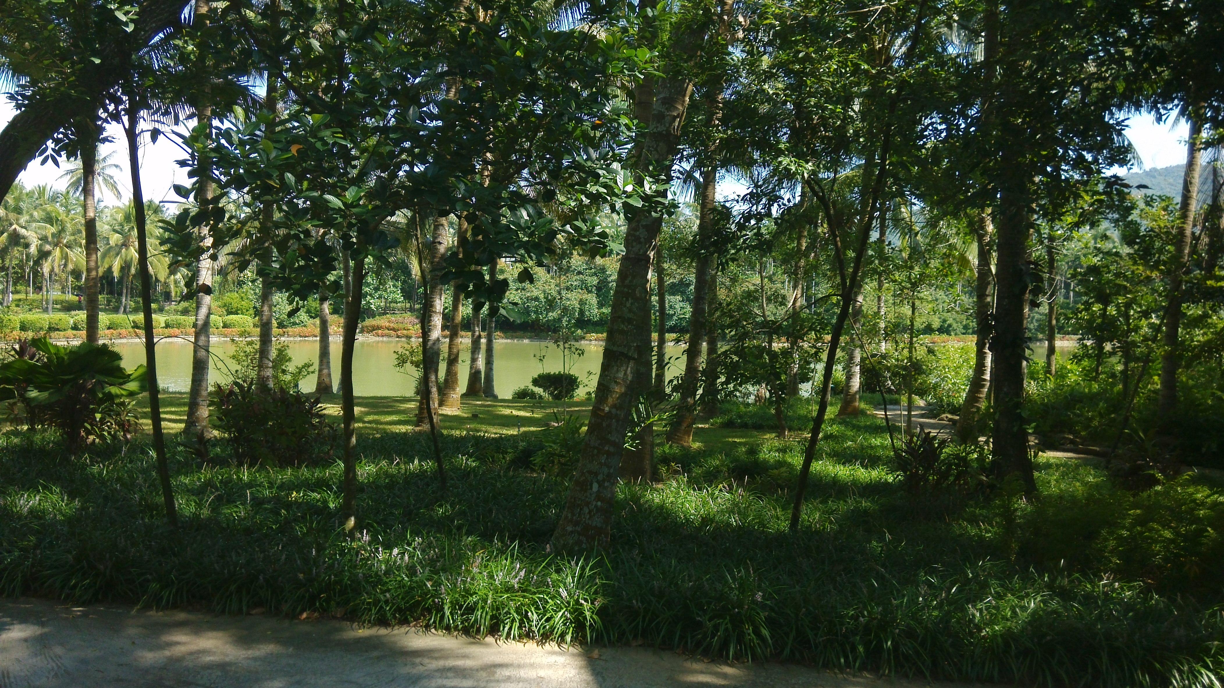 【携程攻略】海南兴隆热带植物园景点,植物园很大,,最