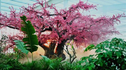 鞍山绿中海温泉