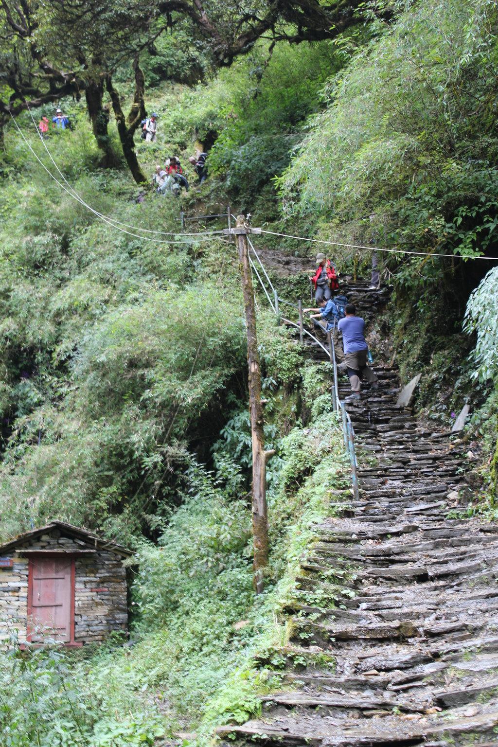 徒步 丛林穿越,精彩的尼泊尔12日游图片