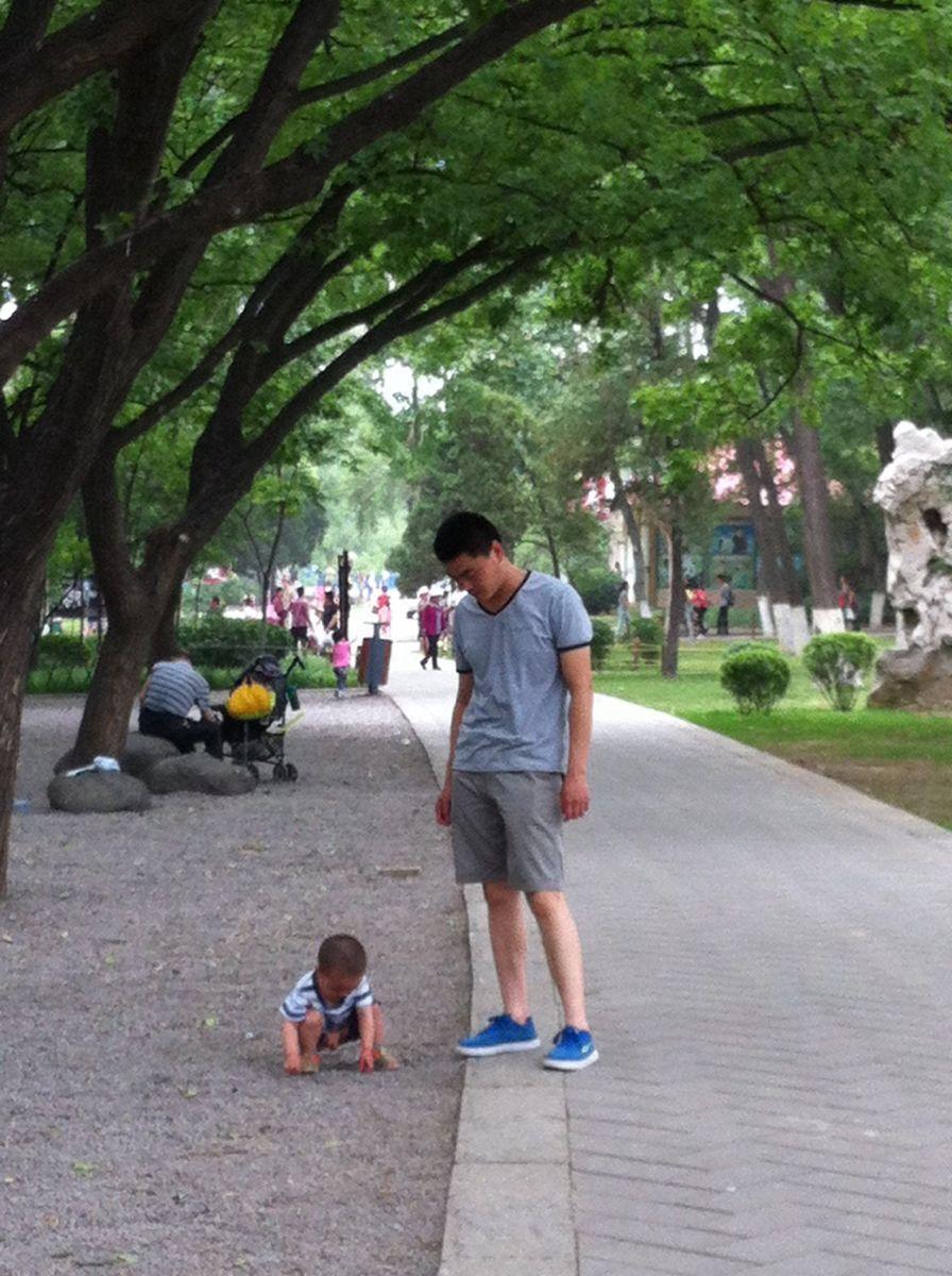 济南动物园,济南济南动物园攻略/地址/图片/门票
