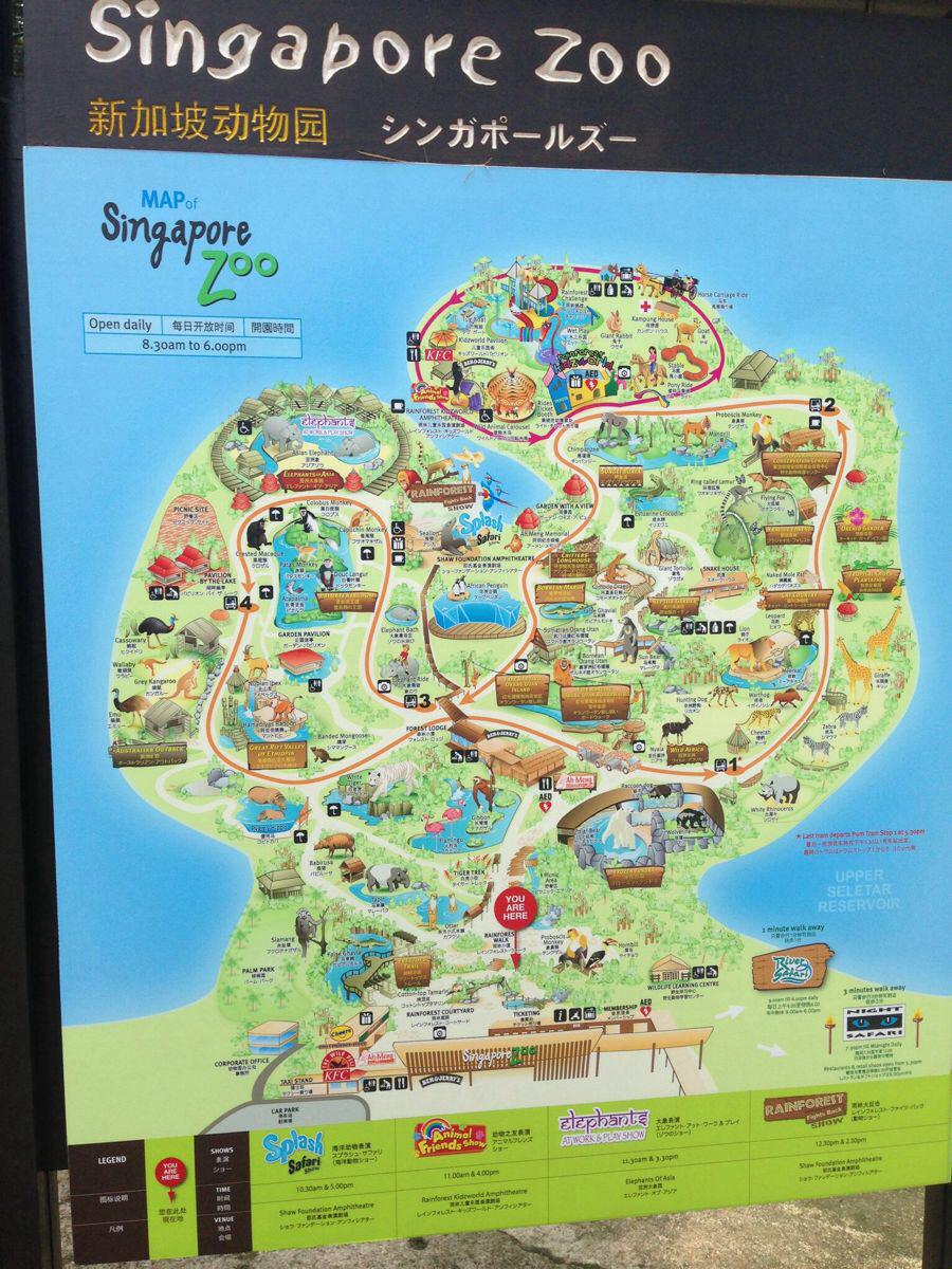动物园地图,一圈走下来也不是很多路的