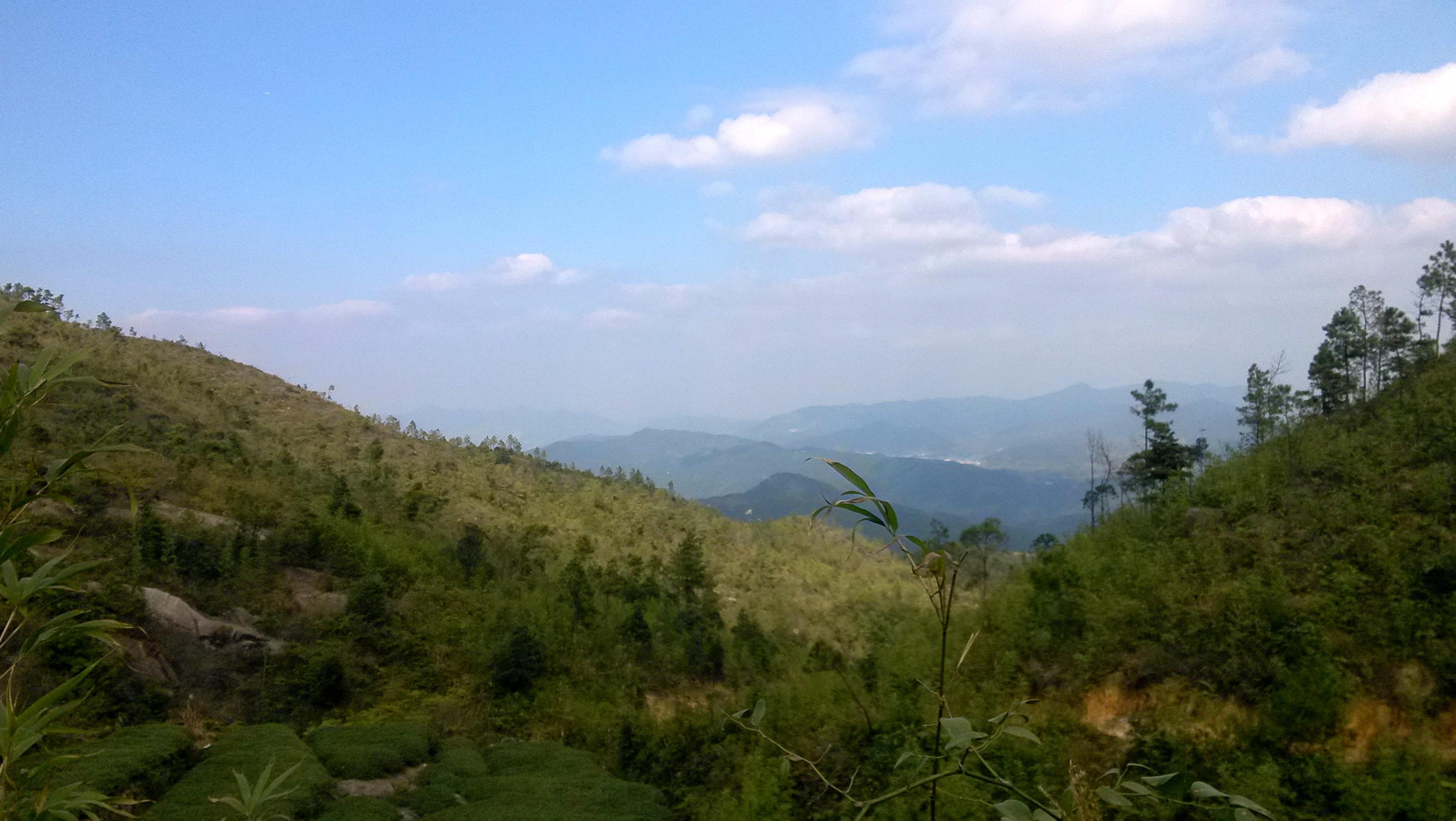 小坪森林公园