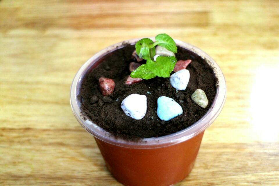 这是可以吃的盆栽冰淇淋