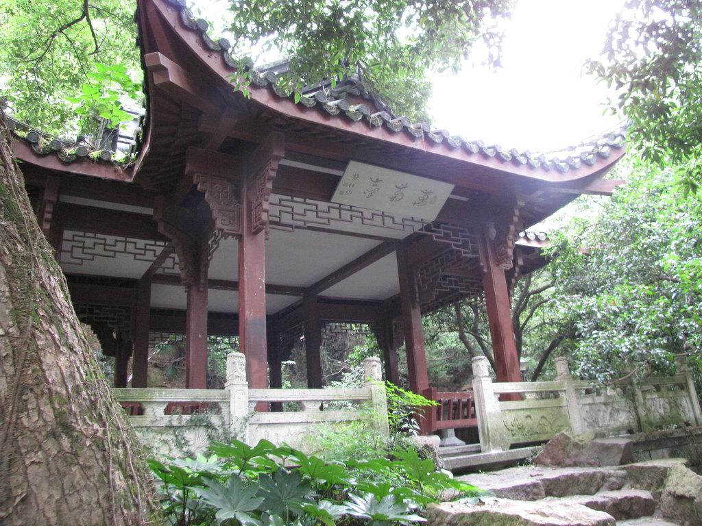 杭州孤山看张伯驹