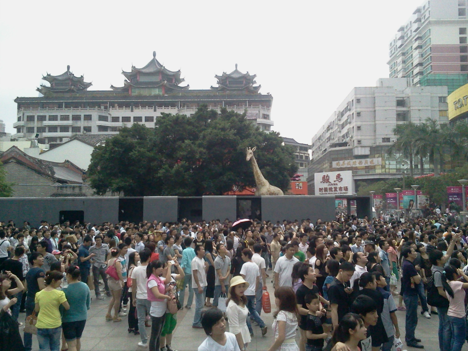 深圳旅行景点 东门