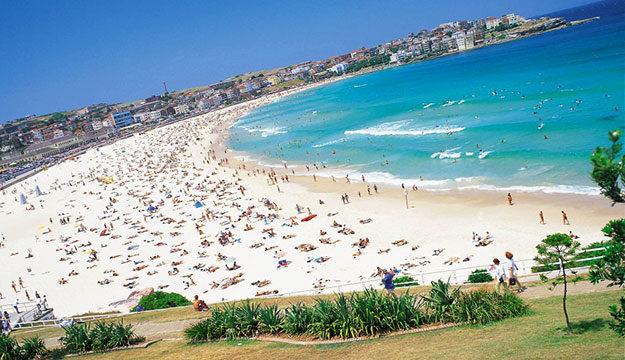 阳光海滩——bondi