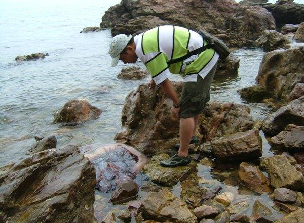 乳山环海6天5晚山东蓬莱长岛威海青岛银滩自密室逃脱6第16关攻略图片