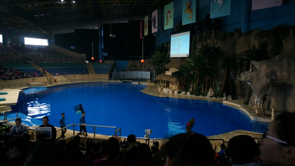 初冬和小伙伴一起有北京动物园
