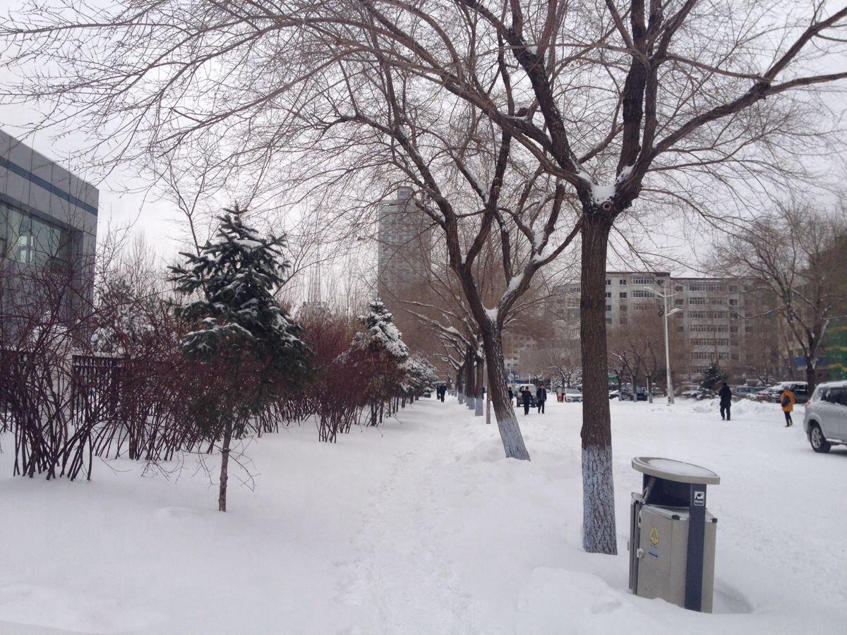 哈尔滨的冬天是一座白色的神秘城堡,雪天中央大街的石板路,和心爱的人