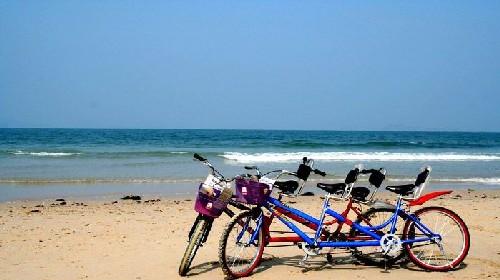 深圳杨梅坑骑单车+海边烧烤+cs野战+西冲海滩特价专享巴士一日游
