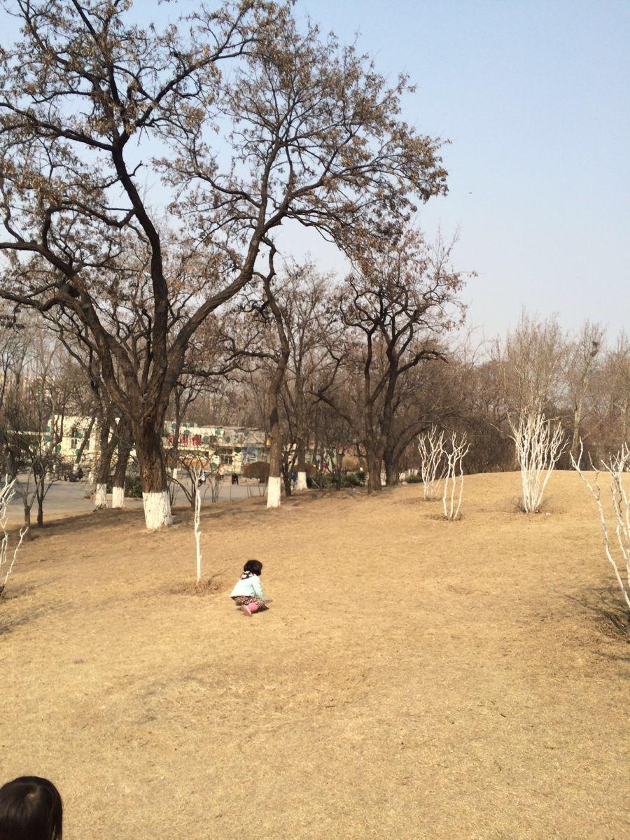 【携程攻略】山东济南动物园家庭亲子点评