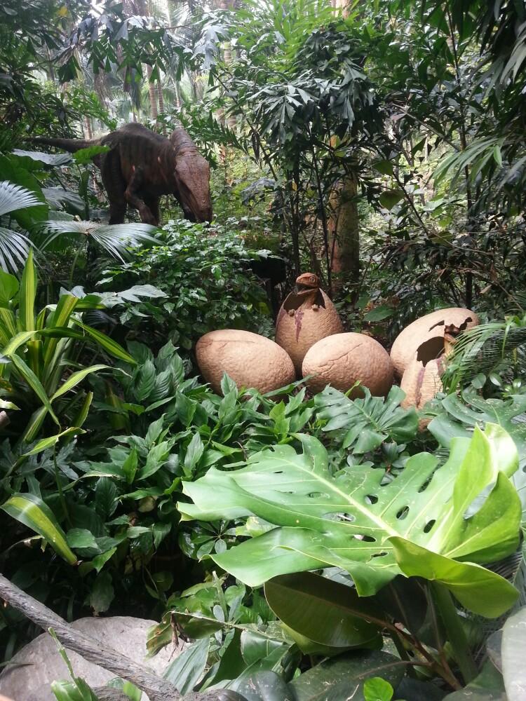 20141101广州长隆野生动物园