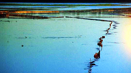 莫力庙水库沙湖旅游区